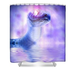 Shower Curtain featuring the photograph Voodoo River by WB Johnston
