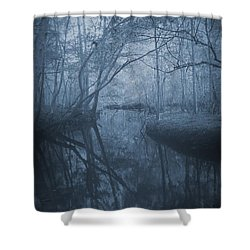 Waccasassa River Shower Curtain by Phil Penne