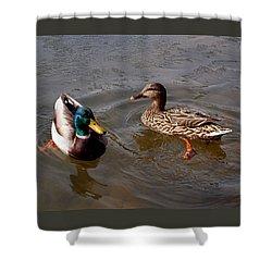 Wading Ducks Shower Curtain