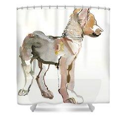 Waggle Arabian Wolf Pup Shower Curtain