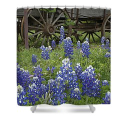 Wagon With Bluebonnets Shower Curtain by Susan Rovira