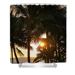 Waikoloa Palms Shower Curtain