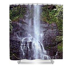 Wailua Falls Maui Hawaii Shower Curtain by DJ Florek
