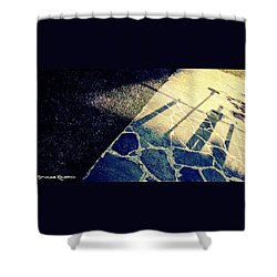Shower Curtain featuring the photograph Wait In The Shade by Stwayne Keubrick