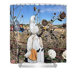 Shower Curtain featuring the photograph Waiting For Darkness by Minnie Lippiatt