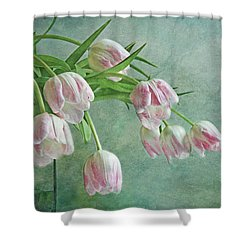 Waiting For Spring Shower Curtain by Claudia Moeckel