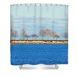 Waiting For Summer - Trees At The Edge Shower Curtain by Mary Machare