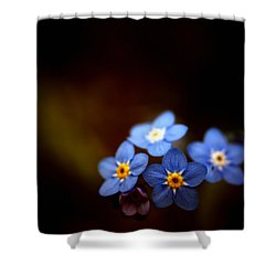 Shower Curtain featuring the photograph Waiting For The Light by Rachel Mirror