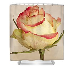 Shower Curtain featuring the photograph Waiting For The Unfurling by Sandra Foster