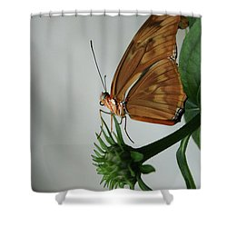 Shower Curtain featuring the photograph  Butterfly Waiting On The Wind  by Cathy Harper