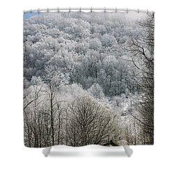 Waiting Out Winter Shower Curtain by John Haldane