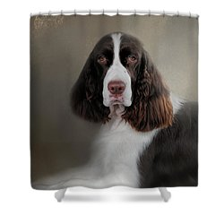 Waiting Patiently - English Springer Spaniel Shower Curtain