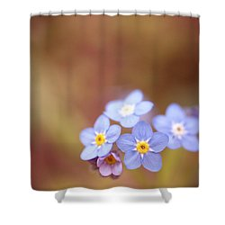 Shower Curtain featuring the photograph Waiting by Rachel Mirror