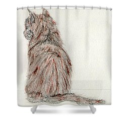 Shower Curtain featuring the painting Waiting by Stephanie Grant