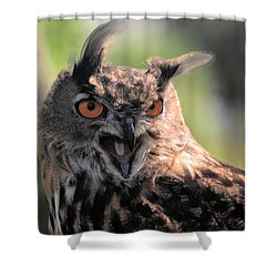Shower Curtain featuring the photograph Wake Up by Leticia Latocki