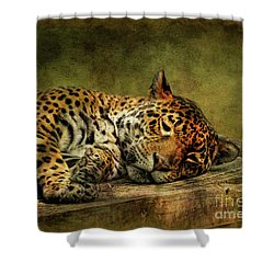 Wake Up Sleepyhead Shower Curtain by Lois Bryan
