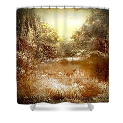 Walden Pond Shower Curtain