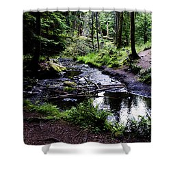 Walk By The Water Shower Curtain