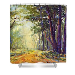 Walk In The Woods 5 Shower Curtain
