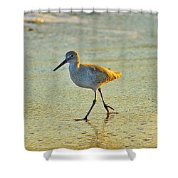 Shower Curtain featuring the photograph Walk On The Beach by Cynthia Guinn