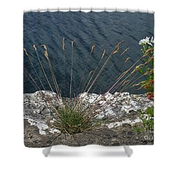 Shower Curtain featuring the photograph Flowers In Rock by Brenda Brown