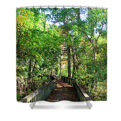 Walk This Way Shower Curtain by Kathy  White