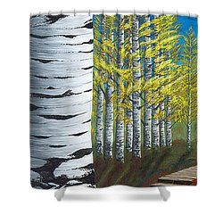 Walk Through Aspens Triptych 1 Shower Curtain