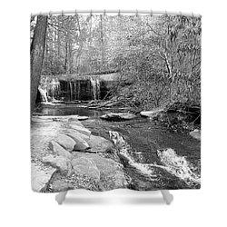 Walk To The Waterfall Shower Curtain by Carol Groenen