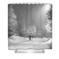 Winter Walk Shower Curtain by Les Palenik