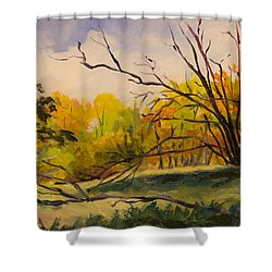 Walking In Montgomery Bell Park. Shower Curtain by Janet Felts