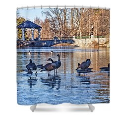 Walking On Thin Ice Shower Curtain