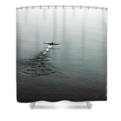Shower Curtain featuring the photograph Walking On Water by Randi Grace Nilsberg