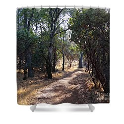 Walking Trail Shower Curtain