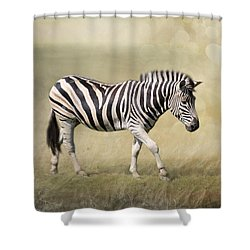 Walking With The Sun Shower Curtain