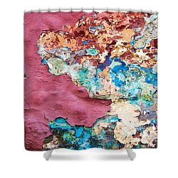 Wall 1 Shower Curtain