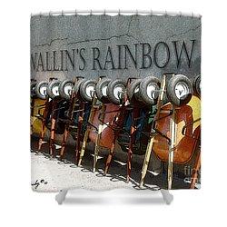 Wallin's Rainbow Shower Curtain