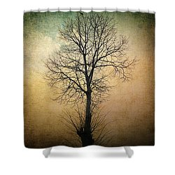 Waltz Of A Tree Shower Curtain by Taylan Apukovska