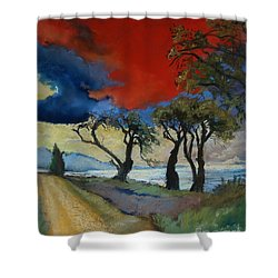 Wander Where The Wind Blows Shower Curtain by Robin Maria Pedrero