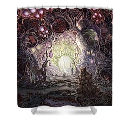 Wanderer Shower Curtain by Mark Cooper