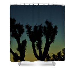 Shower Curtain featuring the photograph Waning by Angela J Wright