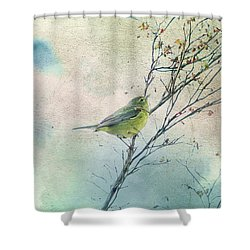 Warbler In A Huckleberry Bush Shower Curtain by Peggy Collins