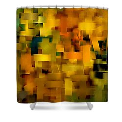 Warmth Essence Shower Curtain by Lourry Legarde