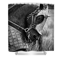 Warrior Horse Shower Curtain