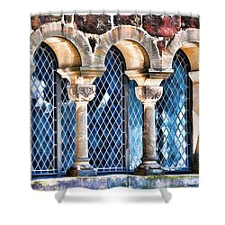 Shower Curtain featuring the photograph Wartburg Castle - Eisenach Germany - 2 by Mark Madere