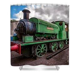Warwickshire No 2047 Shower Curtain