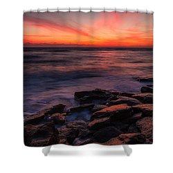 Washington Oaks Winter Sunrise Shower Curtain