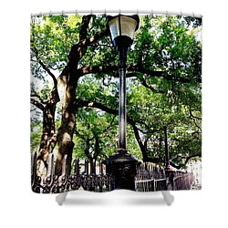 Washington Square Shower Curtain