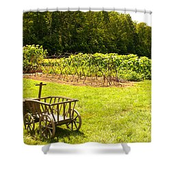 Washington's Garden Shower Curtain