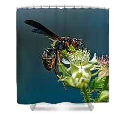 Wasp Shower Curtain by Bob Orsillo