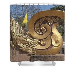 Wat Chedi Liem Phra Ubosot Makara And Stylized Naga Dthcm0838 Shower Curtain